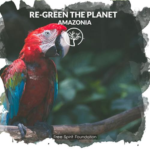 Donation plant trees in Amazonia