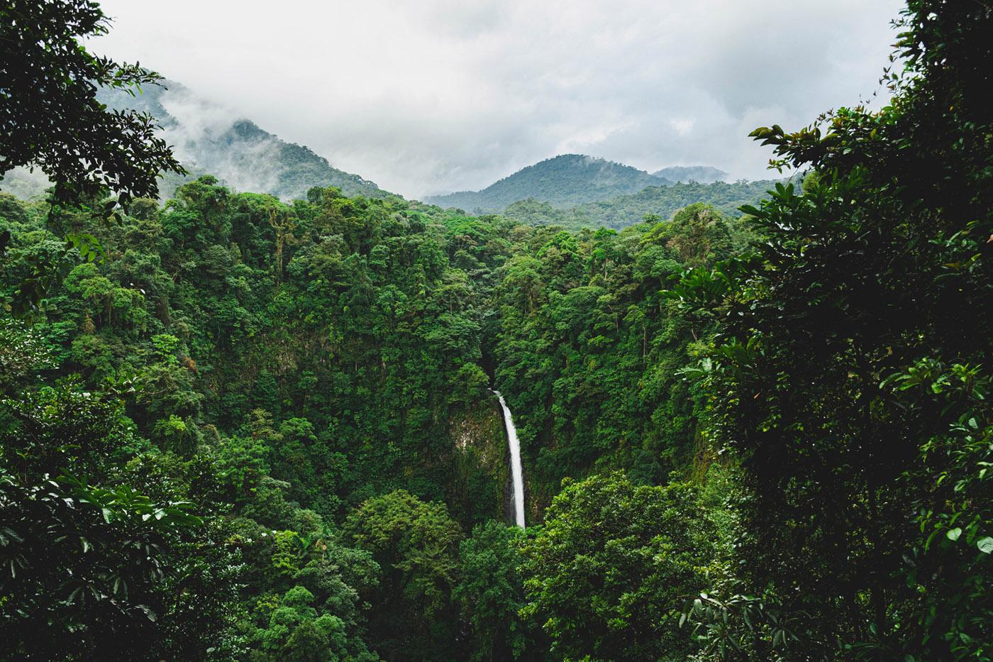 ban Amazonie