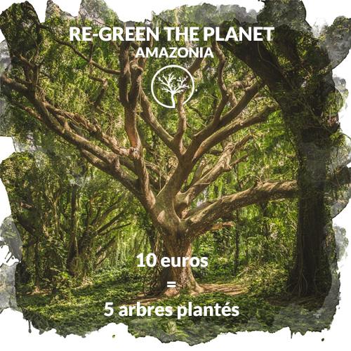 RE-GREEN THE PLANET Planter des arbres en Amazonie pour lutter contre les incendies