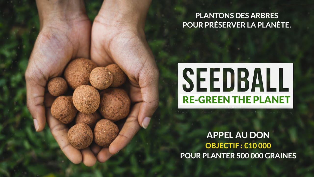 Seedballs bombes de graines boules de graines