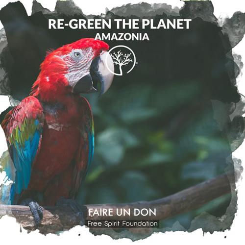 Faire don d'un arbre en Amazonie