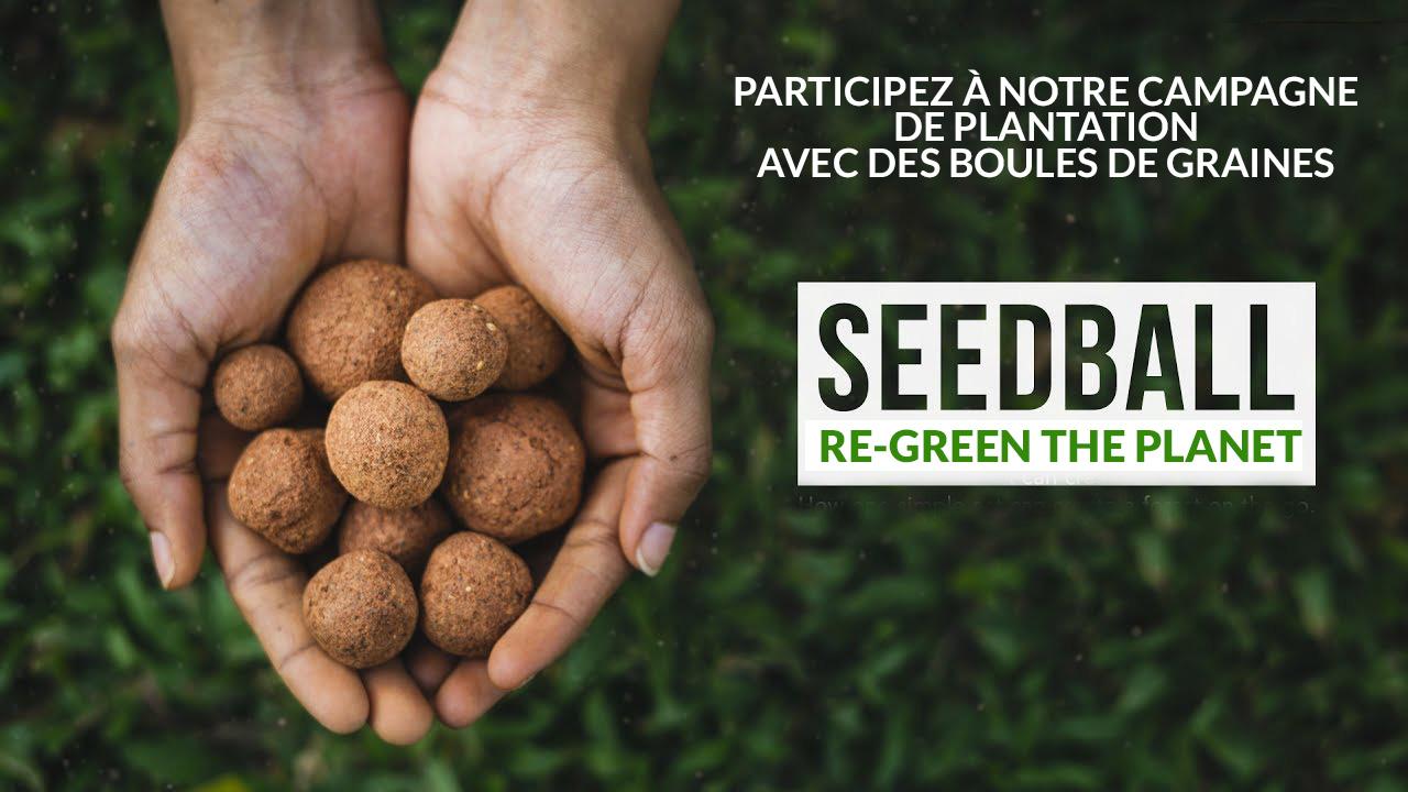 Seedballs bombes de graines planter des arbres