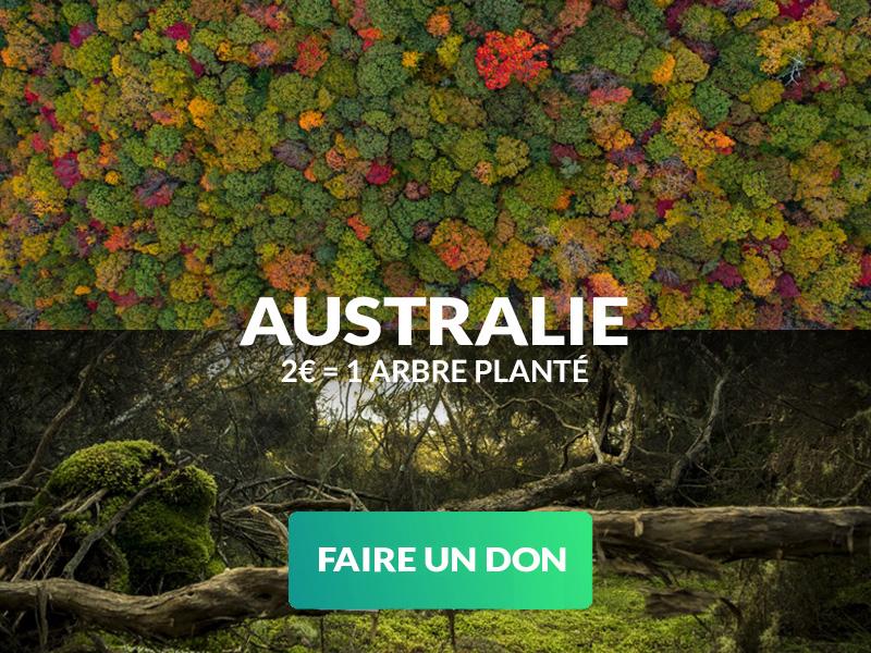 Faire don d'un arbre en Australie