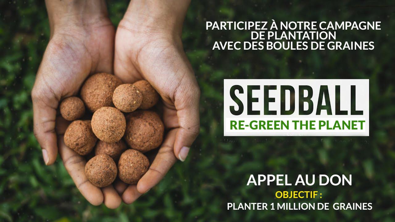 Seedballs bombes de graines faire un don arbres Re-Green the planet