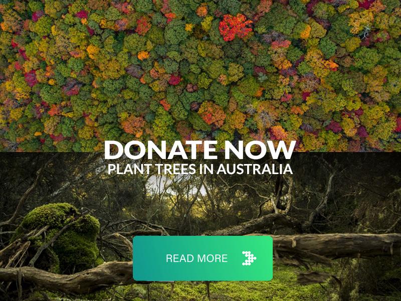 Donate plant trees Australia