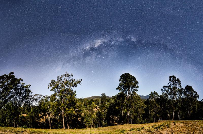 Bushfires in forests of Australia