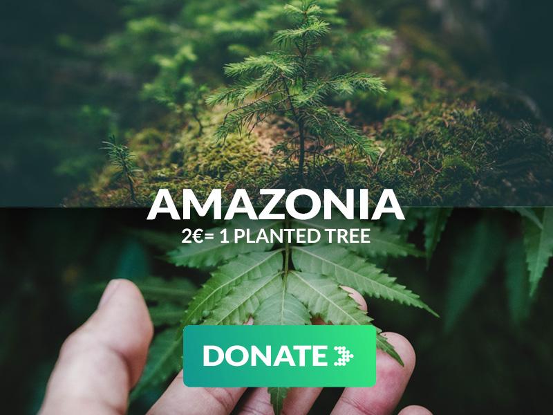 Donate donation plant trees in Amazonia