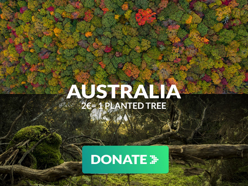 Donate trees australia
