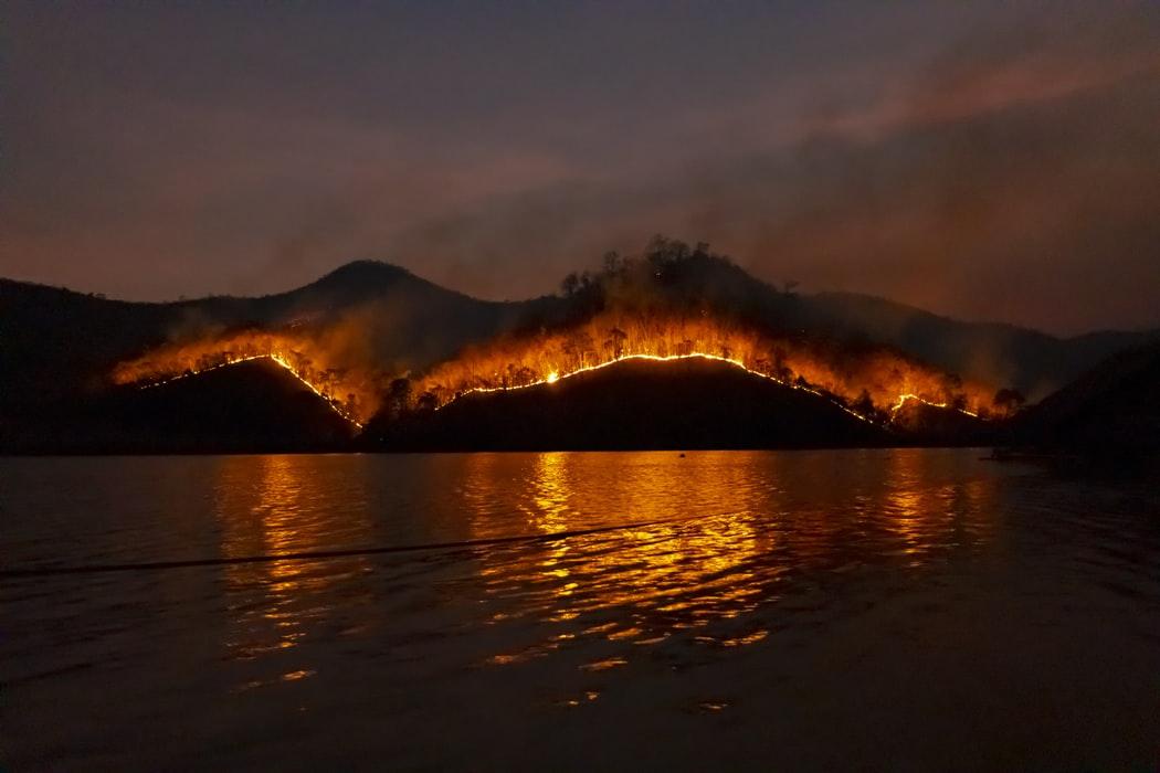 bush fire australie