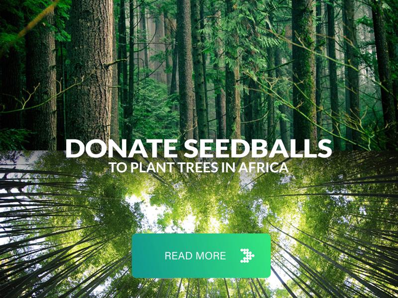 Donate seedballs to plant trees
